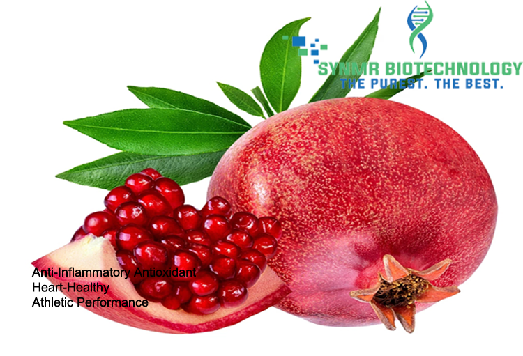 SynPome(Pomegranate Seed Extract)™